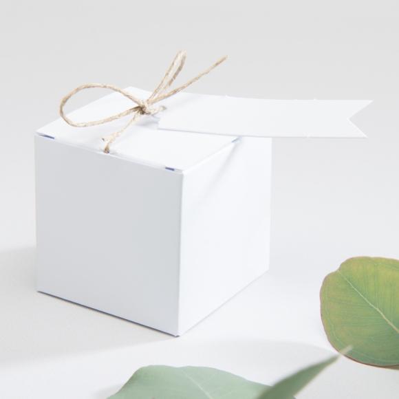 Boîte de dragées vierge
