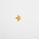 Faire-part de naissance Elégante étoile